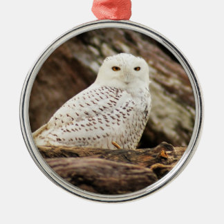 Snowy Owl at Christmas Metal Ornament