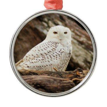Beach Themed Snowy Owl at Christmas Metal Ornament