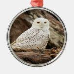 Snowy Owl at Christmas Round Metal Christmas Ornament