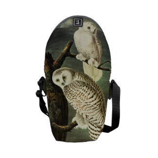 Snowy Owl - Audubon Fine Vintage Birds America Messenger Bag