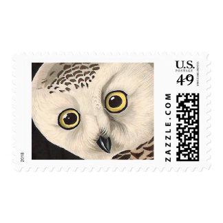 Snowy Owl - Audubon Fine Vintage Birds America Postage