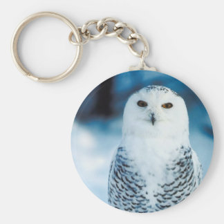 Snowy Owl Basic Round Button Keychain