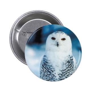 Snowy Owl Pinback Button