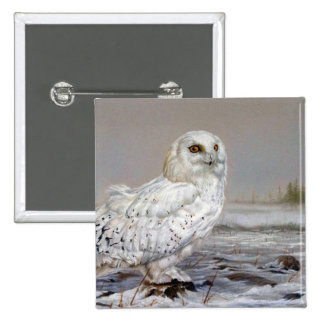Snowy Owl Buttons