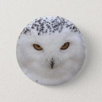 Snowy Owl Button