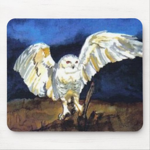 Snowy Owl by Paula Atwell Mouse Pad