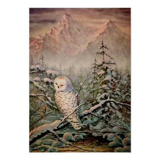 SNOWY OWL by SHARON SHARPE Posters