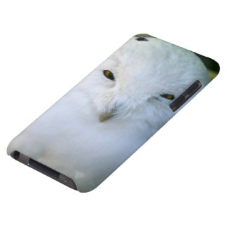 Snowy Owl iPod Touch Case