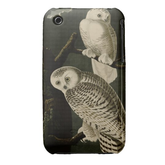 Snowy Owl Case-Mate iPhone 3 Case