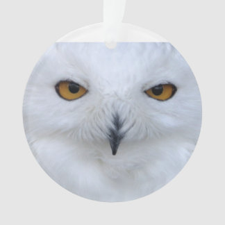 Snowy owl close up ornament