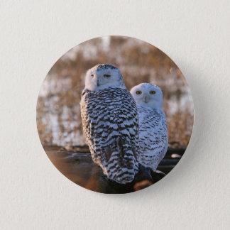 Snowy Owl Couple Button