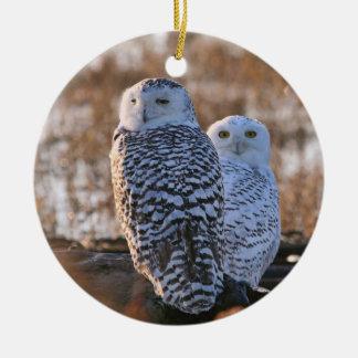 Snowy Owl Couple Ceramic Ornament