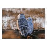 Snowy Owl Couple Greeting Card
