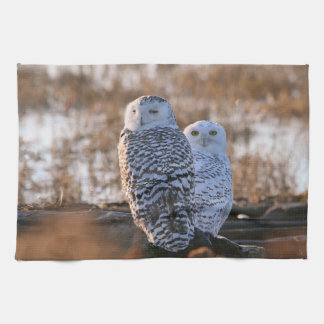 Snowy Owl Couple Hand Towels