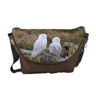 Snowy Owl Couple on Chocolate Brown Courier Bag