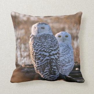 Snowy Owl Couple Pillows