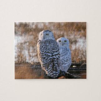 Snowy Owl Couple Jigsaw Puzzle