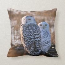 Snowy Owl Couple Throw Pillow