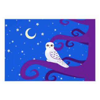 Snowy Owl Crescent Moon Night Forest Art Art Photo