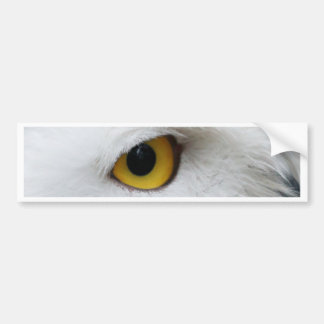 snowy owl eye searching for love car bumper sticker