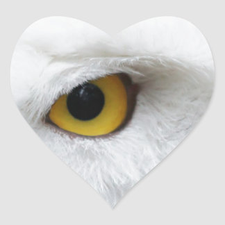 snowy owl eye searching for love heart sticker