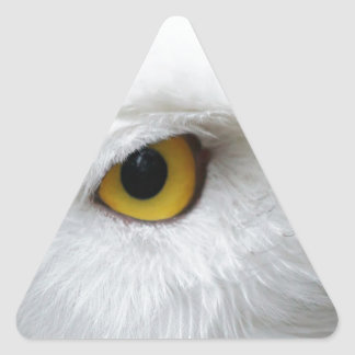 snowy owl eye searching for love triangle sticker