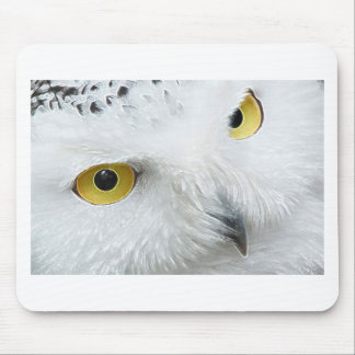SNOWY OWL EYES MOUSE PAD