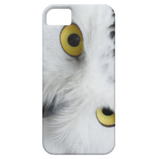 Snowy Owl Eyes Picture on I Phone Case
