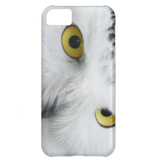 Snowy Owl Eyes Picture on I Phone Case Case For iPhone 5C