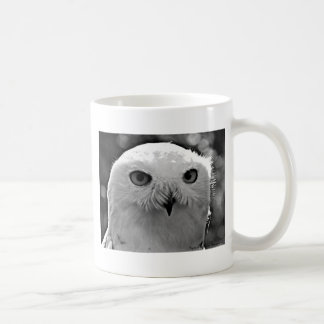 Snowy Owl Gift Collection Mugs