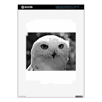 Snowy Owl Gift Collection Skin For iPad 3