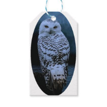 Snowy owl gift tags