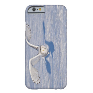 Snowy Owl in flight. Barely There iPhone 6 Case