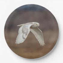 Snowy owl in flight paper plate