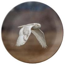 Snowy owl in flight porcelain plate