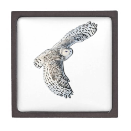 Snowy Owl in Flight Premium Gift Box