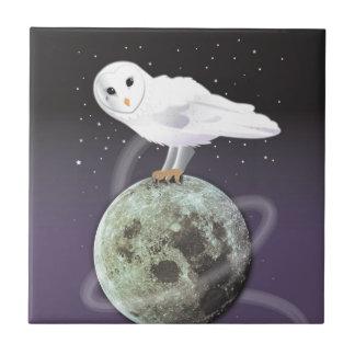 Snowy owl in the moonlight ceramic tile