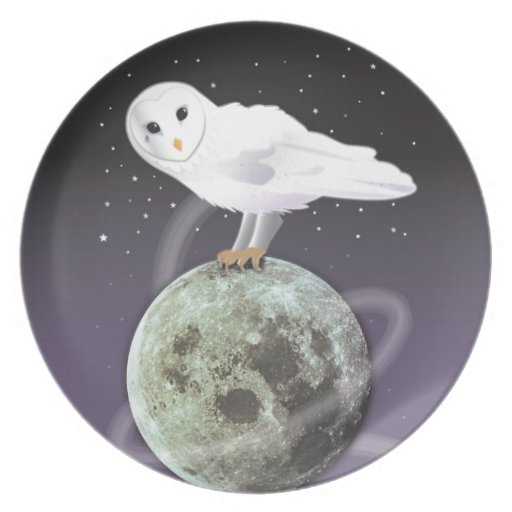 Snowy owl in the moonlight dinner plate