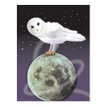 Snowy owl in the moonlight post cards
