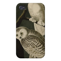 Snowy Owl iPhone 4 Case