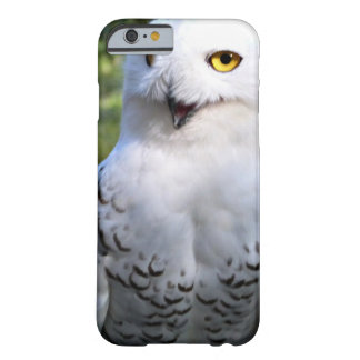 Snowy Owl Iphone 6 Barely there case