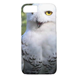 Snowy Owl iPhone 7 Barely there case