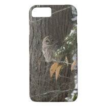snowy owl iPhone 7 case