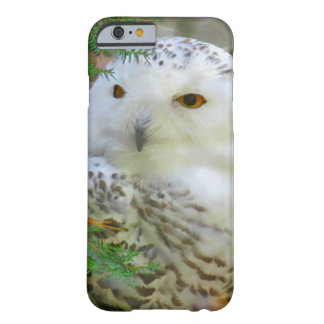 Snowy Owl iPhone Case Barely There iPhone 6 Case