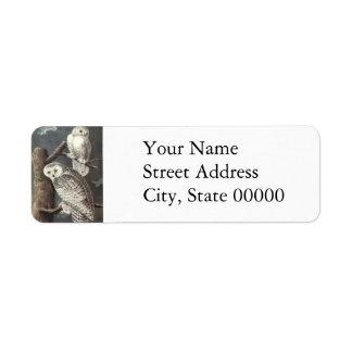 Snowy Owl John Audubon Return Address Label