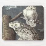 Snowy Owl, John Audubon Mousepad
