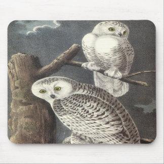 Snowy Owl John Audubon Mousepad