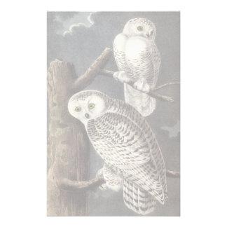 Snowy Owl, John Audubon Stationery
