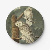 Snowy Owl John James Audubon Vintage Illustration Paper Plate