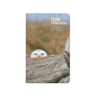 Snowy Owl Journal
